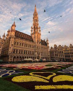Брюссель . Бельгия .