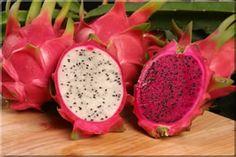 Red Dragon fruit Cactus Pitaya cutting by PattiesPassion on Etsy Purple Dragon Fruit, Dragon Fruit Cactus, Dragon Fruit Pitaya, Dragon Fruit Smoothie, Fruit Smoothies, Pitaya Fruit, Pink Dragon, Exotic Fruit, Tropical Fruits