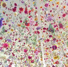 Rebecca Louise Law Flower Artwork - Flower Exhibit in  Chandran Gallery