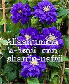 Allaahumma 'a-'iznii min sharrin-nafsii | A Complete Code of Life - Islam