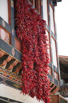 peppers drying in the sun, Bhutan