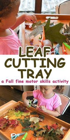 CUTTING TRAY A quick and easy Fall fine motor scissor skills activity cutting leaves. It is something you can do after a nature walk.A quick and easy Fall fine motor scissor skills activity cutting leaves. It is something you can do after a nature walk. Fall Preschool Activities, Motor Skills Activities, Toddler Learning Activities, Preschool At Home, Nature Activities, Sensory Activities, Preschool Curriculum, Physical Activities, Toddler Halloween Activities