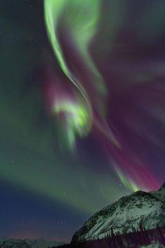 Alaskan Auror Borealis Photo by Sam Amato -- National Geographic Your Shot-Eureka, Alaska-March 20