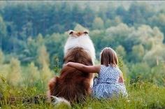 """Children are the cheese to your rough collie's macaroni. They go hand in hand. The gentleness and watchful protectiveness of the breed mean your rough collie spells """"perfect family dog."""" This beautiful rough collie quality is something only owners may truly understand."""