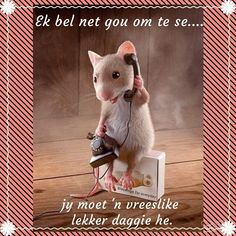 Lekker Dag, Monday Blessings, Afrikaanse Quotes, Goeie Nag, Goeie More, Sweet Quotes, Good Night Sweet Dreams, Good Morning Wishes, Animaux