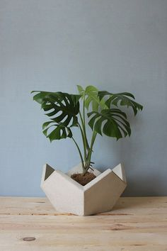 geometric planter by EDRO DESIGN - lovely combination of shapes Concrete Pots, Concrete Crafts, Concrete Projects, Concrete Design, Concrete Planters, Planter Pots, Garden Planters, Garden Table, Potted Plants