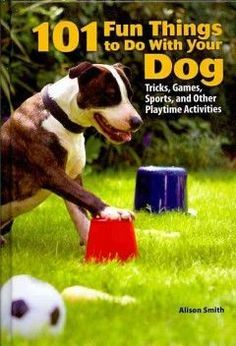 Describes a variety of ways for dog owners to have fun with their dogs, including games designed to match a breed's natural abilities, from outdoor scent games and speed tests to obstacle courses and sports for dogs.