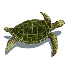 Sea Turtle - Green w/Shadow