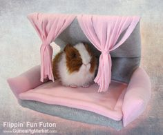 A Flippin' Fun Futon from the Guinea Pig Market http://www.GuineaPigMarket.com/flippin-fun-futon