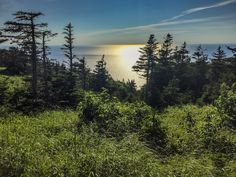 With dramatic coastlines, waterfalls, vibrant bays and beaches, it's easy to see why Canada's Cabot Trail is considered one of the world's best road trips. Nova Scotia Travel, Cabot Trail, Atlantic Canada, Parks Canada, Cape Breton, During The Summer, Canada Travel, Walking Tour, East Coast
