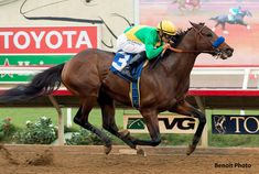 Mastery wins the Bob Hope Stakes