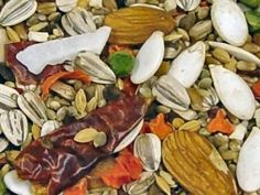 Volkman Avian Science Eclectus Food NOT Vitamin Fortified 4 lb