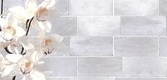 Marble Bianco Venatino Gioia - Natural Stone. Click on the image to visit our website and to view the rest of our collection. Marble Look Tile, Natural Stones, Rest, Nature, Website, Backsplash, Image, Tiles, Collection