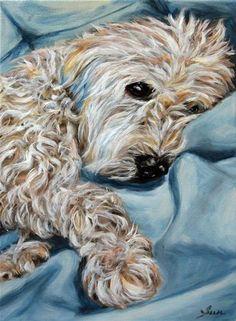 """wheaten Terrier"" - Sun Sohovich"