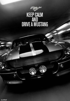 Keep calm (or not) ... and drive a mustang... Shelby GT500 Eleanor all in muscles -