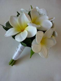 Natural Petite Frangipani