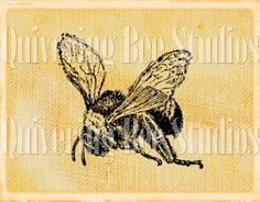 Bumble Bee Digital Download-fabric transfer by QuiveringBeeStudios