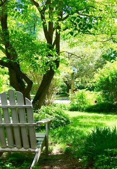Adirondack chair with a great view of the birdhouse in a cottage garden