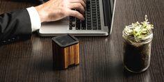 Zebra Wood Satellite Bluetooth Speaker in an office setting