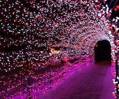 Tunnel of lights