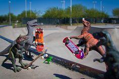 Dino boarding