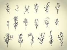 Image result for forget me not tattoo ideas