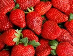 Extend strawberries - clean strawberries - cut off the green tops - let berries air dry about 10 min. - slice or cut - store the berries in a zip close bag in your frig - instead of spoiling in 2 days strawberries will last about a week or more - when the tops are left on the green tops continue to take on more oxygen and ripen more quickly - which leads to spoiling more quickly