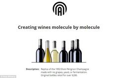 Two wine experts aremaking synthetic wine without grapes, instead combining ethanol with carefully-chosen flavour compounds (product illustrated above)