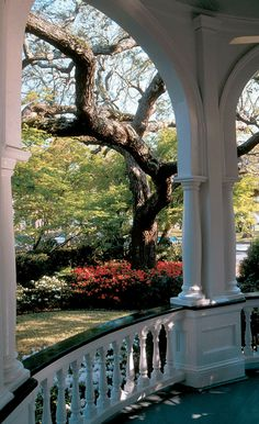 View from a porch in Charleston, South Carolina