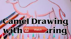 😸 How to Draw the Camel Tutorial Animal Video Drawing Art SLD 🐶 How to Draw the Camel Tutorial Animal Video Drawing Art SLD Music by 🎠 on…