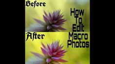 Macro Photo, Snapseed, Iphone Photography, Social Media Tips, Photo Editing, Ipad, Tutorials, Google, Pictures