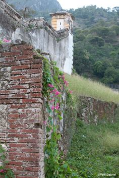 This July we are celebrating Milot, Haiti, home of Hôpital Sacré Coeur! Among the historical places to visit in Milot are the ruins of the Sans Souci Palace. Built in the early 1800's for ruler Henri Christophe, Sans Souci Palace is currently in ruins as a result of and earthquake in 1842, and has never been reconstructed.  As you can see in these photos by photographers Patti Gabriel and Nathan MacFarland, Sans Souci Palace is a beautiful structure even in its destructed state.