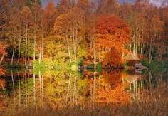 autumn perthshire - Google Search
