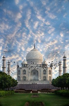 STOP and take a look at this rare picture of one of the most iconic symbols of love - Taj Mahal, Agra!   Wish to visit it? Call us at 1-877-763-7444 or email us at info@expedition2.com   TO BOOK NOW, CLICK: https://expedition2india.com/group-tours/Golden-triangle-of-india-at-tour  #India #IncredibleIndia #TajMahal #AgraTourism #Agra #UttarPradesh #UPTourism #IndiaToursim #travel #trip #tour #yolo #usa #UCLA