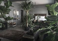 The Mustang Nero/Room No.6 The Lion Song - Bed & Breakfasts for Rent in Bangkok - Get $25 credit with Airbnb if you sign up with this link http://www.airbnb.com/c/groberts22