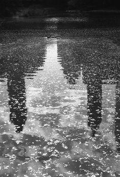 Bill Perlmutter, Broken Shadows, Central Park, 1998, Archival pigment ink print