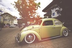 Photo from Scotch and Iron / Worthersee Treffen Lake Worthersee Austria of a sweet Volkswagen Bug Vintage Slammed