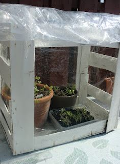 By Kristín Hrund Handcrafts - a homemade greenhouse from recycled materials Homemade Greenhouse, Diy Greenhouse, Green Cleaning, Greenhouses, Flower Ideas, Recycled Materials, Fingers, Planting Flowers, Garden Ideas