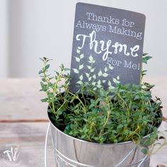 The end of the school year is fast approaching. Say Thank you to your teacher with herbs. Includes free printable tags for thyme and dill.