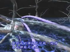 113大腦神經