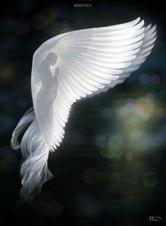 Angel Images, Angel Pictures, Angels Among Us, Angels And Demons, Beautiful Angels Pictures, Angel Artwork, Fantasy Kunst, Angel Warrior, Angel Prayers