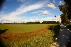 #sky #clouds #florida #photography #wideangle #country #southern #trees #dirtroad