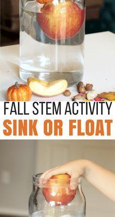 Fall STEM