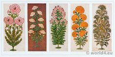 Indian Cotton Printer`s Pattern Book Plant Drawings. Drawings in Gold and Color. Sample Prints from Sprig Blocks by J. Kipling, father of the author Rudyard Kipling. Indian Fabric, Indian Textiles, Indian Patterns, Textile Patterns, Louis Xiv, Baroque, Fabric Design, Pattern Design, Renaissance