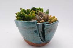 ceramic planter by WickedClayGirl on etsy