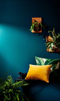 Shop the Trend: Tropical Decor - Bring this year's hottest interiors look home with palm leaf prints, brass accents, and rattan de - Tropical Bedrooms, Tropical Home Decor, Tropical Interior, Tropical Furniture, Living Room Decor, Bedroom Decor, Teal Living Rooms, Blue Rooms, Deco Design