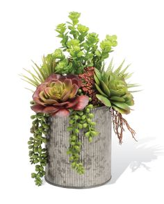 """{$tab:description} A CHARMING MIX OF BEAUTY & TEXTURE A pleasing mix of succulent variety, arranged in a 5.5"""" tall galvanized metal container, brings natural beauty and texture to any shelf, mantle, or tabletop in your home or office. Artificial succulents are a wonderful way to bring an organic décor element into your space. {$tab:DETAILS} 11"""" Height x 9"""" Width Galvanized Metal Container - 5.5""""H x 4.75""""Diameter Simple Natural Beauty; Carefree..."""