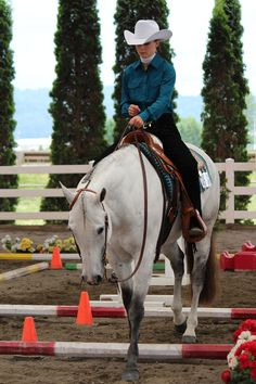 If I ever get into showing, I would be happy to do trail :) I really learned to love it my last semester of college.