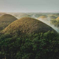 Stunning view in Chocolate hills, Bohol 🇵🇭😍♥️ Bohol, Palawan, Chocolate Hills, Stuff To Do, Things To Do, Siargao Island, Whale Watching Tours, What To Do Today, Top Destinations