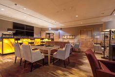 Frankfurt VIP lounge